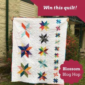 Blossom blog hop prize